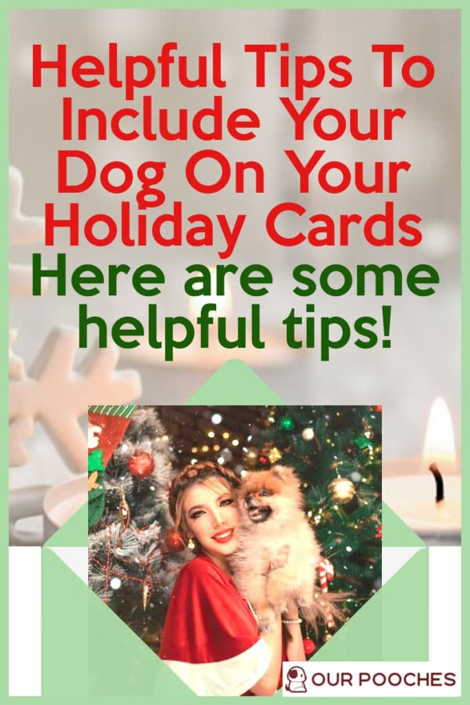 Include your dog on your holiday cards