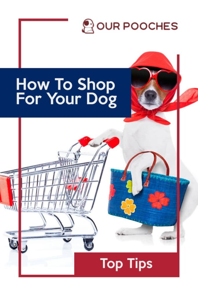 How to shop for your dog
