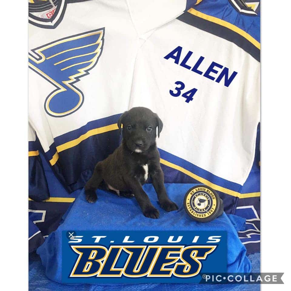 Named After The Blues