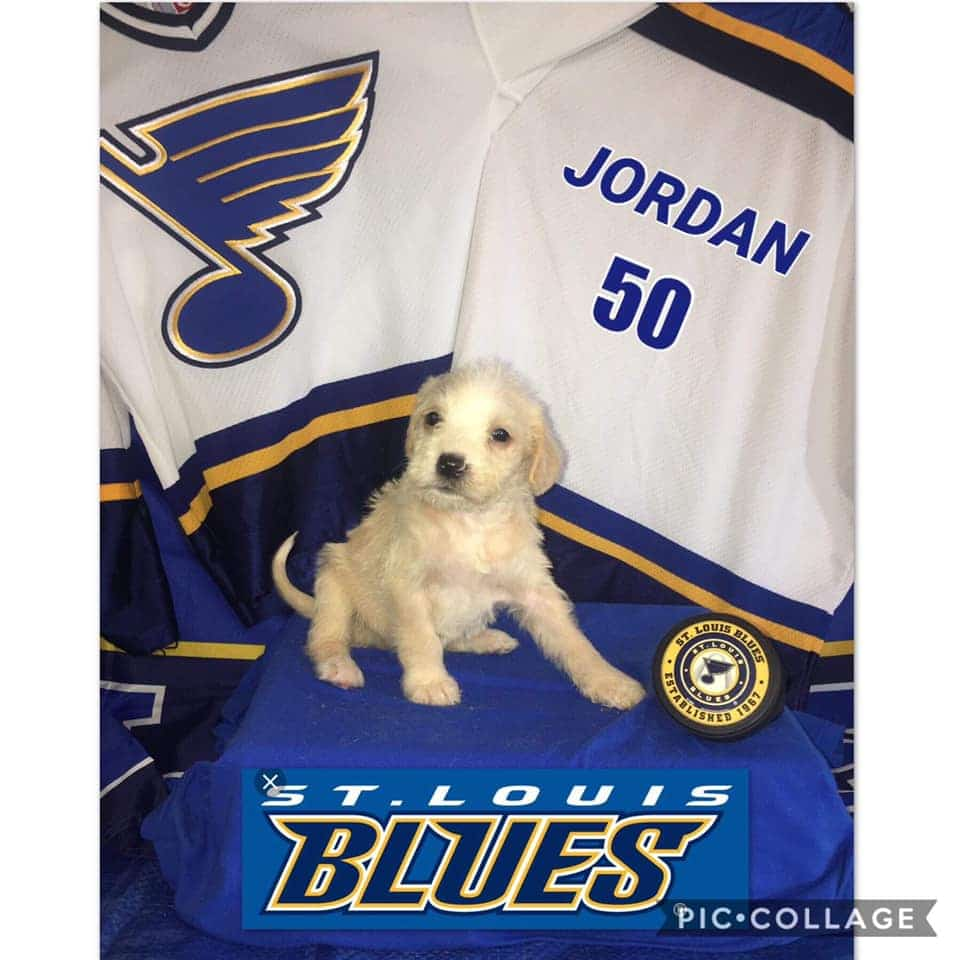 Jordan is Named After The Blues