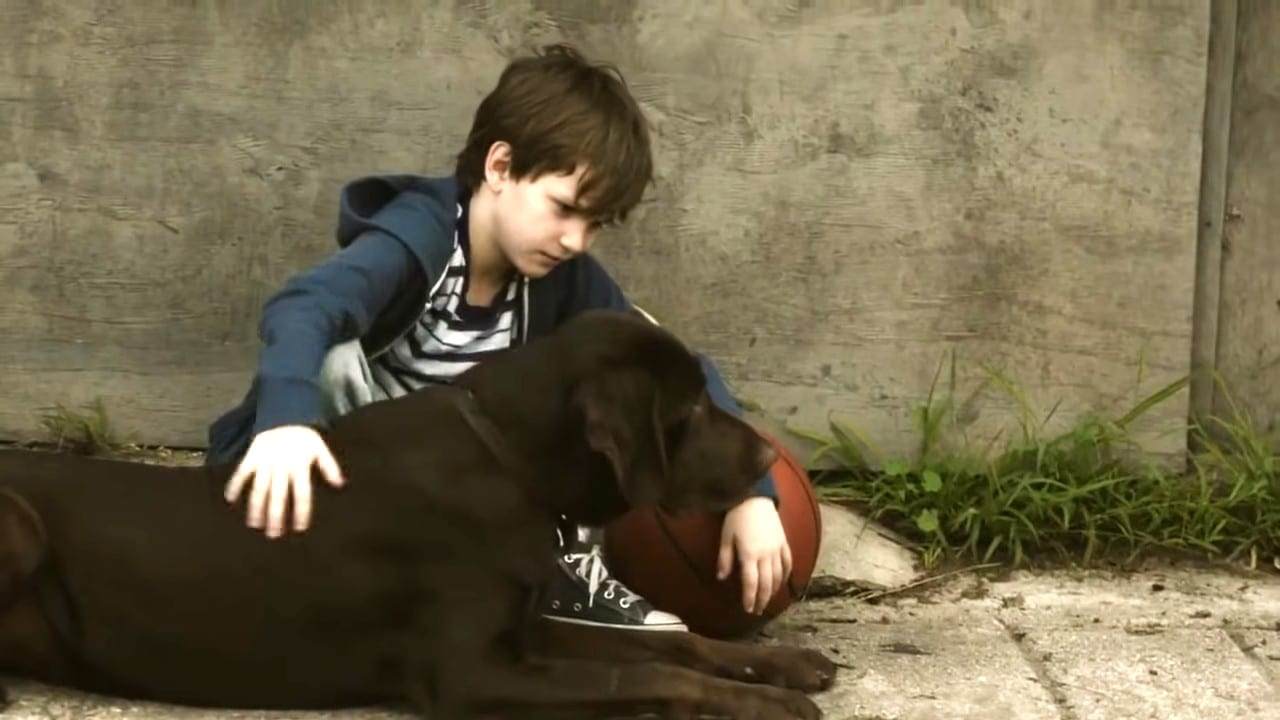 Little Boy And Pup's Captured Bonding Moment