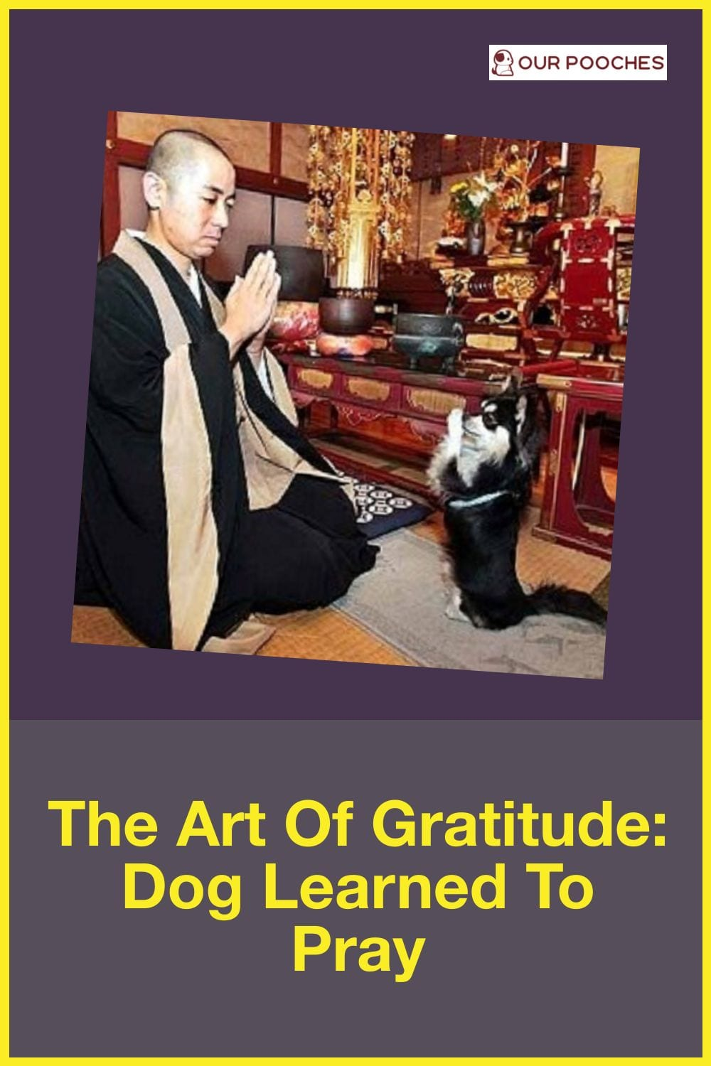 The art of gratitude Dog Learned To Pray
