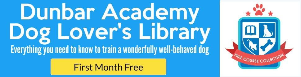 everything you need to know to train a wonderfully well-behaved dog first month free ad