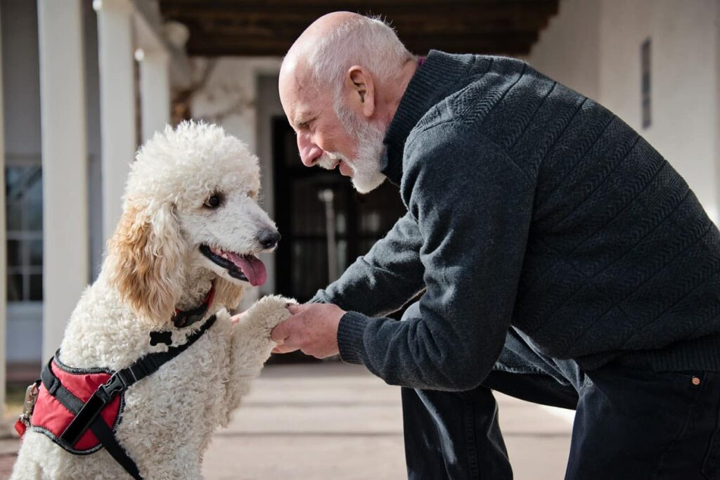 Man shaking the best service dog's paw