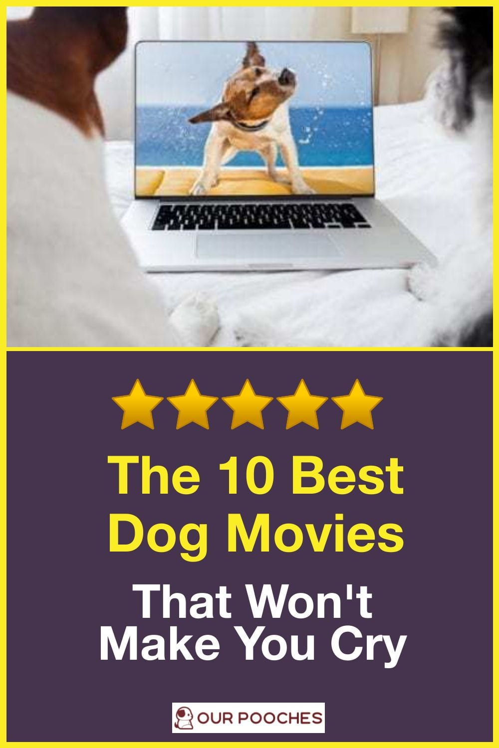 10 best dog movies that wont make you cry