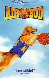 movie poster for the movie airbud