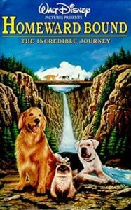 Movie poster for Homeward Bound